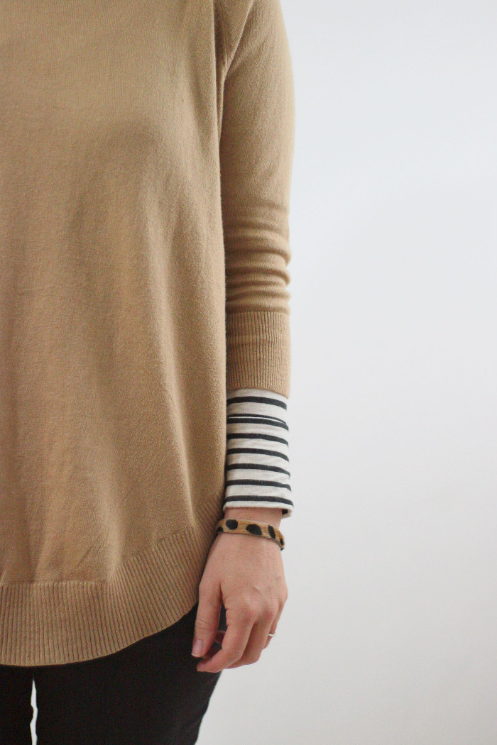 camel and stripes 5